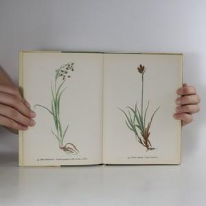antikvární kniha Horské rostliny, 1963
