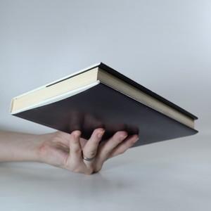 antikvární kniha Pokušení A-ZZ, 1982