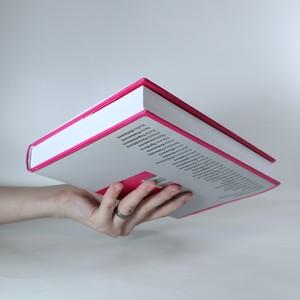 antikvární kniha Po boku. Třiatřicet manželek našich premiérů (1918-2012), 2012