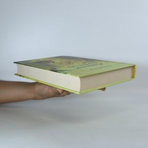 antikvární kniha Kamenné světlo, 2009
