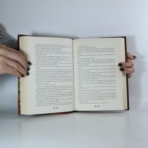 antikvární kniha Inferno, 2013