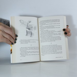 antikvární kniha Plyšový Buddha, 2017