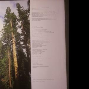 antikvární kniha Moudrost stromů. Historie, lidová tradice, symbolika, léčení, 2012