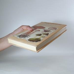 antikvární kniha Mushrooms and fungi. Hamlyn colour guides, neuveden