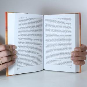 antikvární kniha Rok vdovou, 2007