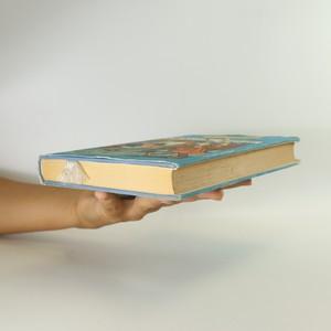 antikvární kniha Okresní město, 1960