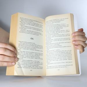 antikvární kniha Sny nestačí, 2000