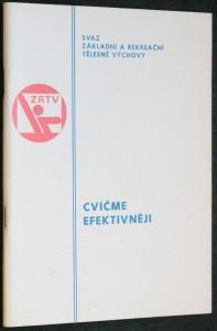 náhled knihy - Metodický dopis cvičme efektivněji