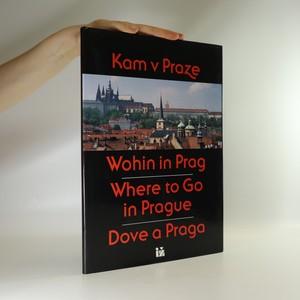 náhled knihy - Kam v Praze a okolí