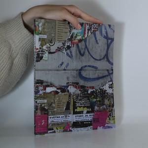 náhled knihy - Současné umění očima Martina Fryče
