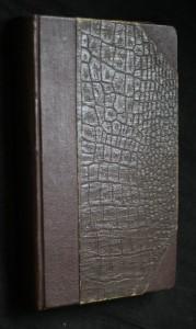 náhled knihy - Světec Don Bosko