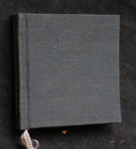 náhled knihy - Karneval : výbor z díla
