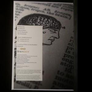 antikvární kniha The business brain book, 2008