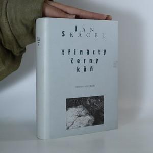 náhled knihy - Třináctý černý kůň