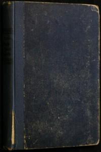 náhled knihy - Mladý a starý ženich : Povídka z našeho venkova