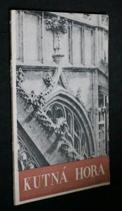 náhled knihy - Kutná hora v památkách sedmi století