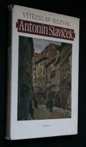 náhled knihy - Antonín Slavíček : a great Czech painter