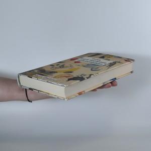 antikvární kniha Dívka, která nepřestala věřit pohádkám, 2014