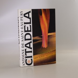 náhled knihy - Citadela