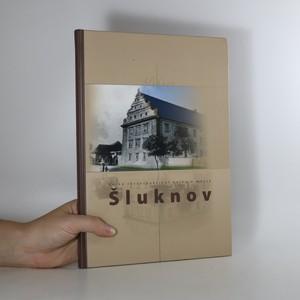 náhled knihy - Velká retrospektivní kniha o městě Šluknov