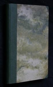 Panorama VII