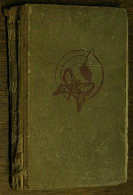náhled knihy - Motýl ve svítilně : Román