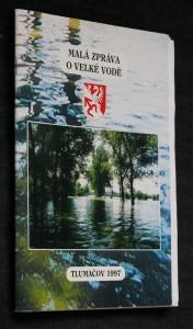 náhled knihy - Malá zpráva o velké vodě
