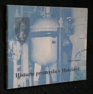 náhled knihy - Historie průmyslu v Holešově