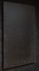náhled knihy - Má vlast. Z českých luhů a hájů Z českých luhů a hájů symfonická báseň z cyklu