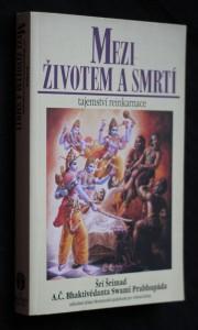 náhled knihy - Mezi životem a smrtí : tajemství reinkarnace a cesta k dokonalosti