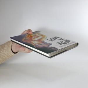 antikvární kniha Růže a meč, 1995