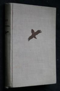 náhled knihy - Lovy a příroda : Myslivecké a přírodopisné črty