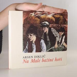 náhled knihy - Na Malé bažině hoří
