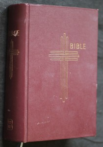 náhled knihy - Bible : Písmo svaté Starého a Nového zákona : (včetně deuterokanonických knih) : český ekumenický překlad
