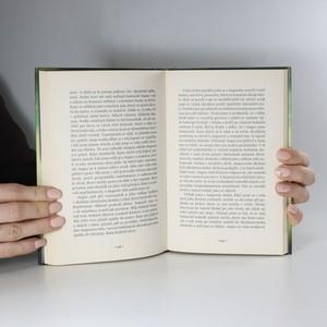 antikvární kniha Kníže z mlhy, 2013