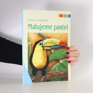 náhled knihy - Malujeme pastel
