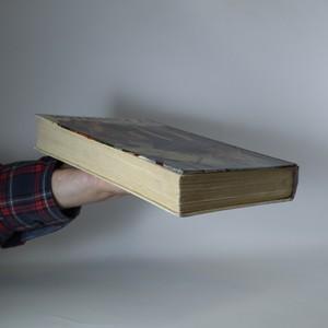 antikvární kniha V pustinách. Dobrodružný román, 1936
