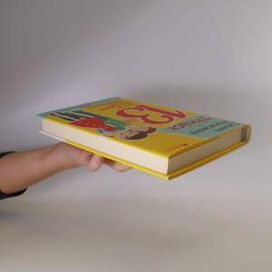 antikvární kniha Třináct : třetí díl neobyčejného deníku obyčejné holky, 2010