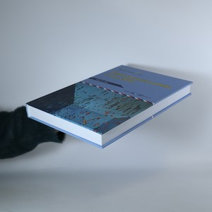 antikvární kniha Česká zahraniční politika v roce 2010. Analýza ÚMV, 2011