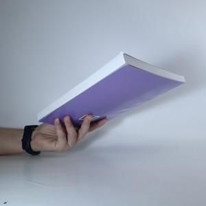 antikvární kniha Možnosti a meze účetnictví veřejného a neziskového sektoru, 2009
