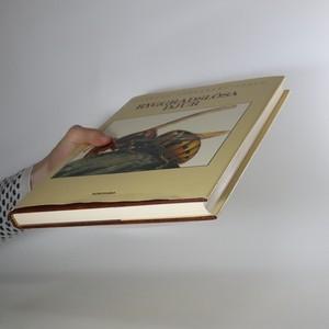 antikvární kniha Ryggradslösa djur 3, 1984