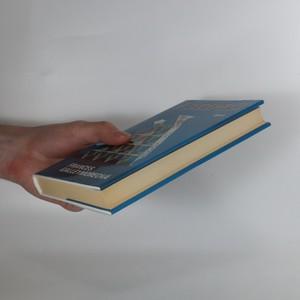 antikvární kniha V bezpečí, 2002