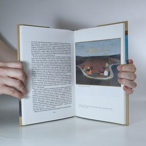 antikvární kniha Nepaměti. 1969-1972, 1998
