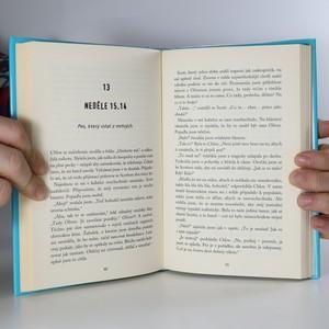 antikvární kniha Dívky, 15, absolutní šílenkyně, 2010