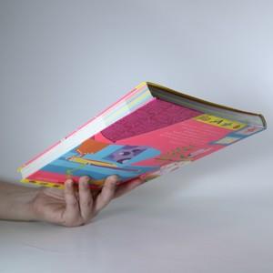 antikvární kniha Nápadník pro šikovné holky, 2008