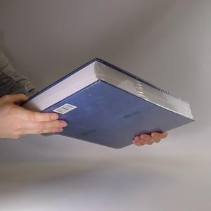 antikvární kniha Encyklopedie českých dějin (zabaleno), 2008