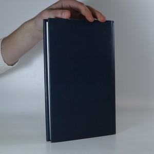 antikvární kniha Mlhou tam a zpět, 1998