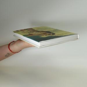 antikvární kniha O lásce, tichu i zradě, 2012