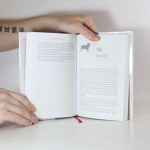 antikvární kniha Ztráty a nálezy, 2009