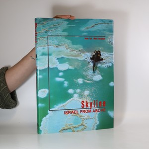 náhled knihy - Skyline